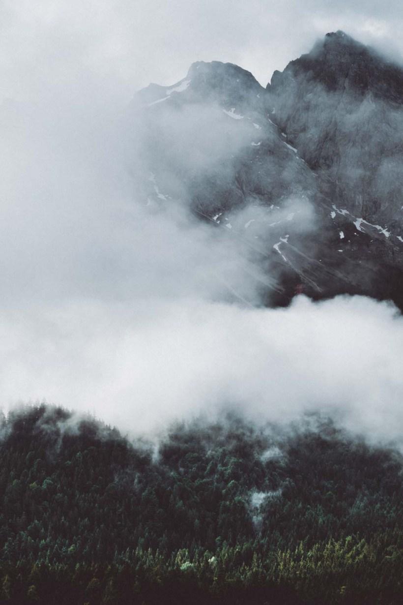 Die wolkenverhangenen Wälder an der Bergwänden