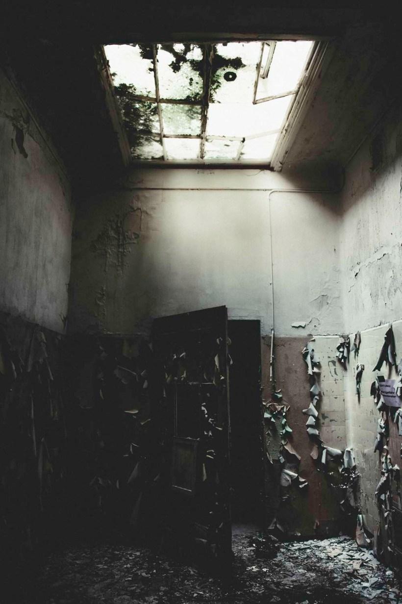 Licht fällt durch das zerbrochene und mit Mos bedeckt Deckenlicht.