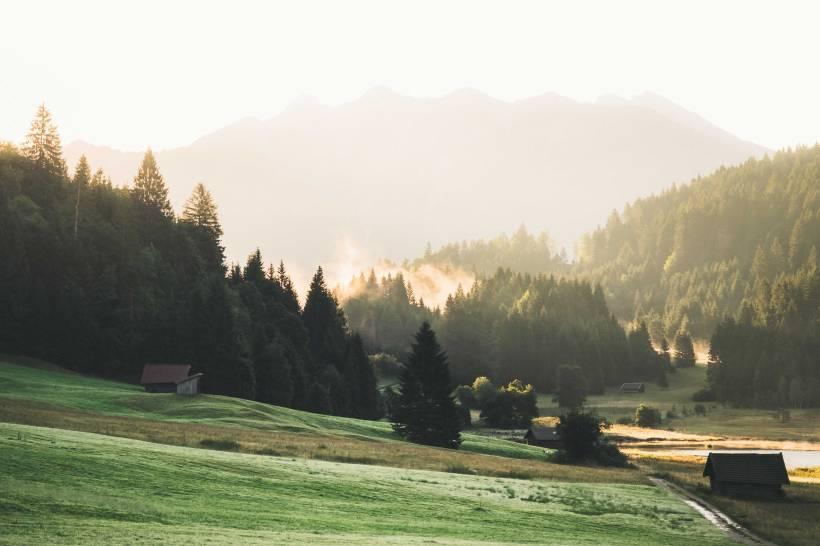 Das erste Licht des Tages durchdringt den Wald rund um den Geroldsee.