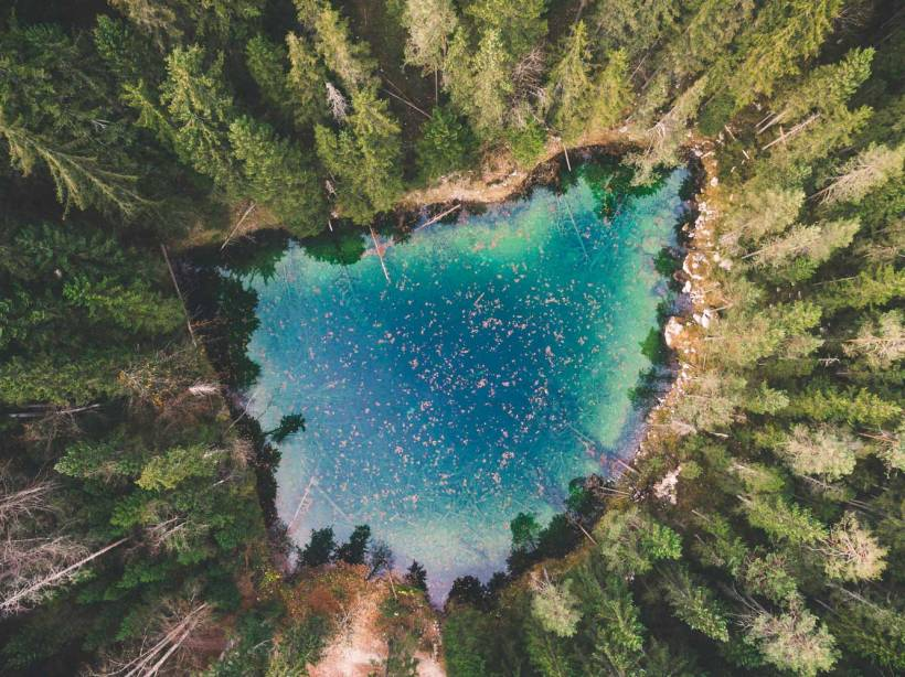 Der Steinringpriel am Eibsee von oben. Tiefblaues Wasser mit Laub auf der Oberfläche.