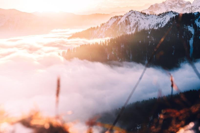 Der Blickwinkel mit dem 56mm Fuji XF wirkt fast wie ein Weitwinkel. Durch die die niedrige Perspektive entsteht ein sehr schönes Licht.