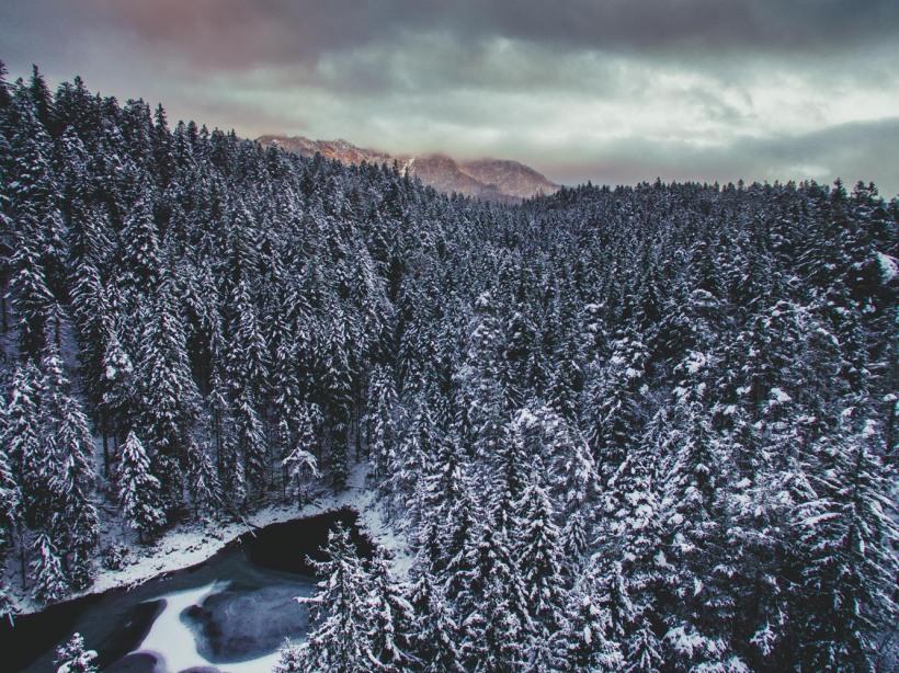 Die aufgehende Sonne brachte ein wenig Farbe in die sonst recht graue Winterlandschaft.