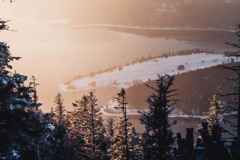 Blick durch den dichten Bergwald hinab auf den Walchensee. Der Nebel sorgte für ein schönes und weiches Licht.