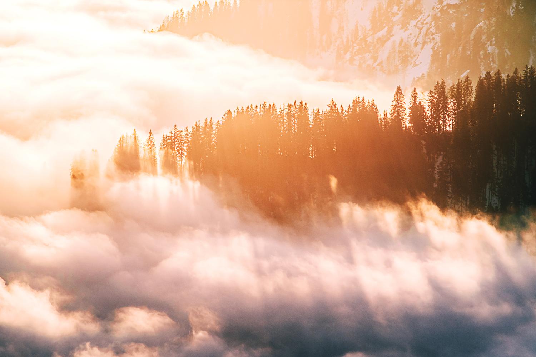 Der Januar zeigt einen Sonnenaufgang über den Wolken am Wallberg. Als die Sonnen über die umliegenden Gipfel stieg, zauberte ihr Licht dieses Schauspiel aus langen Schatten der Bäume des Bergwalds
