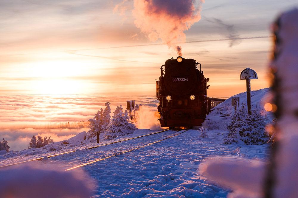 Der letzte Zug der Brockenbahn fährt im Abendlicht zum Bahnhof hinauf.