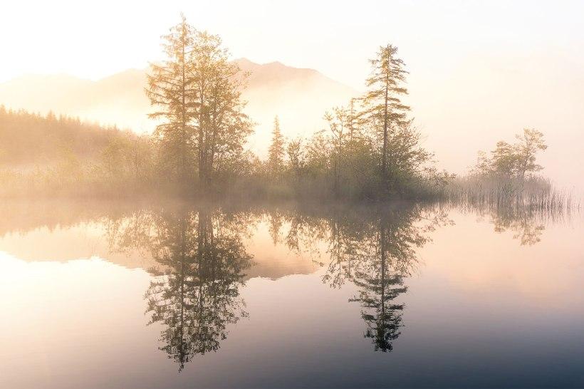 nebel zum sonnenaufgang an einem bergsee